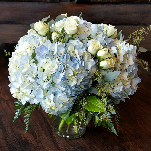 Blue skies filled with blue  hydrangea, white roses