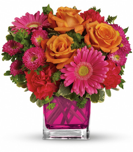 Bright and colorful, hot pink and orange flowers