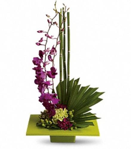 Cut purple dendrobium orchids in flat green plate