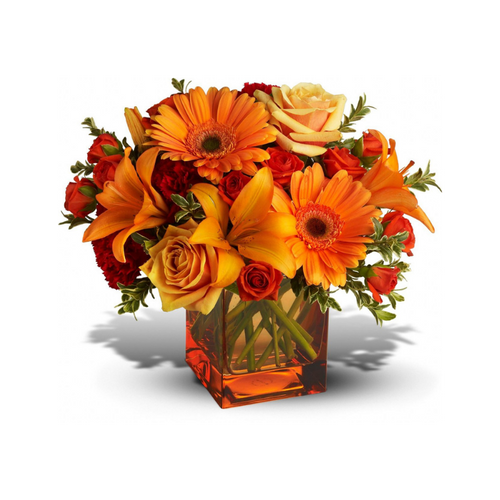 Sunrise, sunset, swiftly fly the days. So don't let another day go by without letting someone you know that you are thinking of them. This delightful arrangement will brighten anyone's morning, noon and night.
