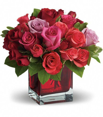 Assorted colored roses in a red glass cube