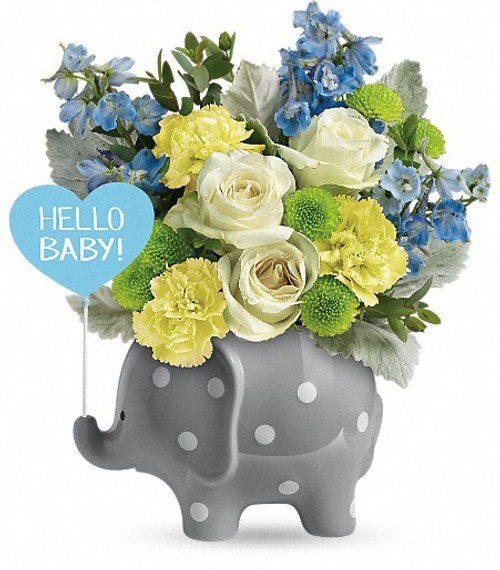 New baby boy, elephant, blue flowers