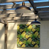Barn Style Pendant Light Outdoors