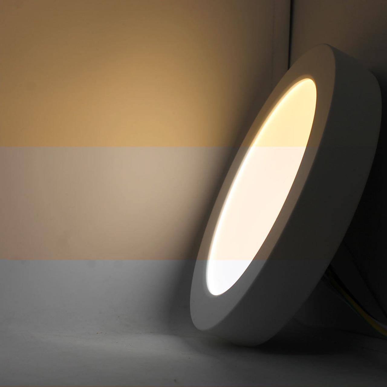 Flush Mounted Ceiling Lights