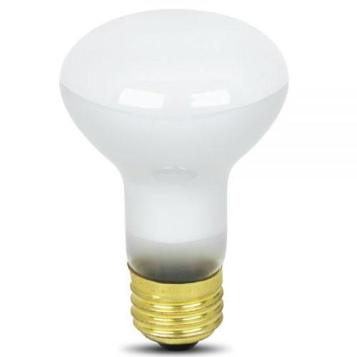 120V 45w BR20 Reflector Light Bulb