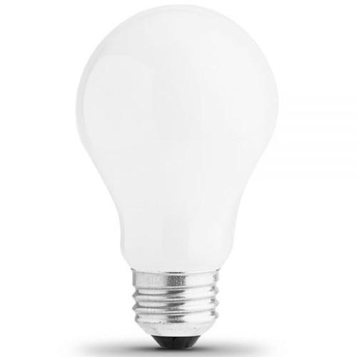 12V 25w Frosted A19 Light Bulb