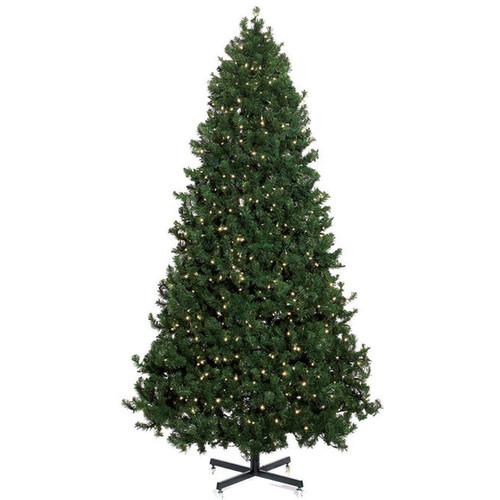 6' Calgary Pine Pre Lit LED Christmas Tree