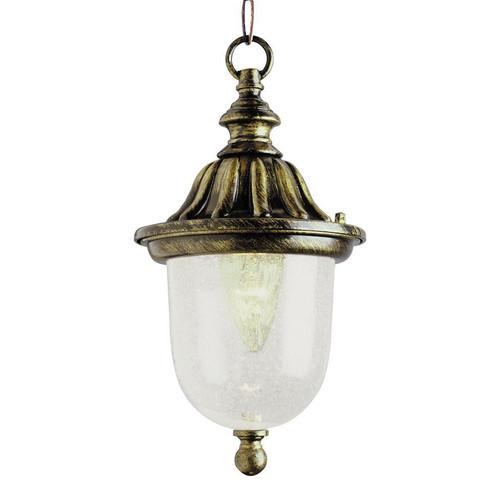 1 Light Black Gold Outdoor Hanger 4185BG