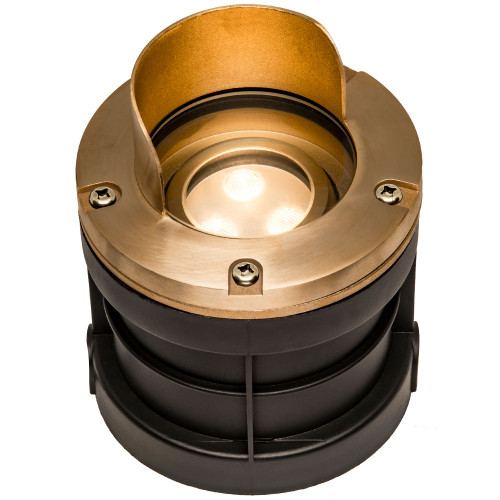 Raw Cast Brass Adjustable Well Light