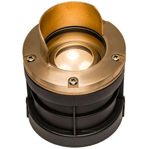 Raw Cast Brass Adjustable Well Light