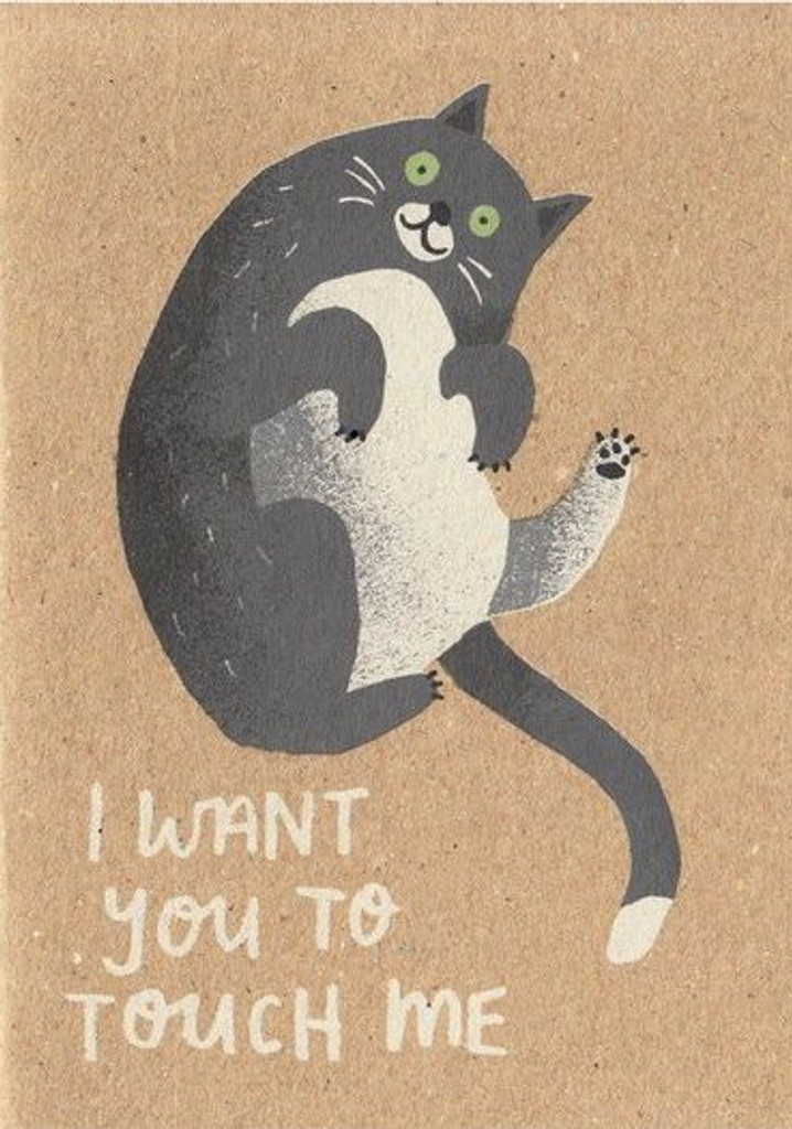 I want you to touch me cheeky Birthday Card - Stormy Knight