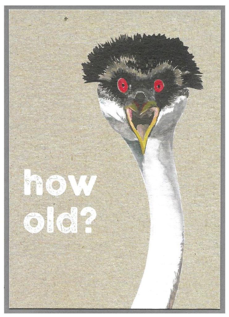 How Old Greeting Card - Cinnamon Aitch