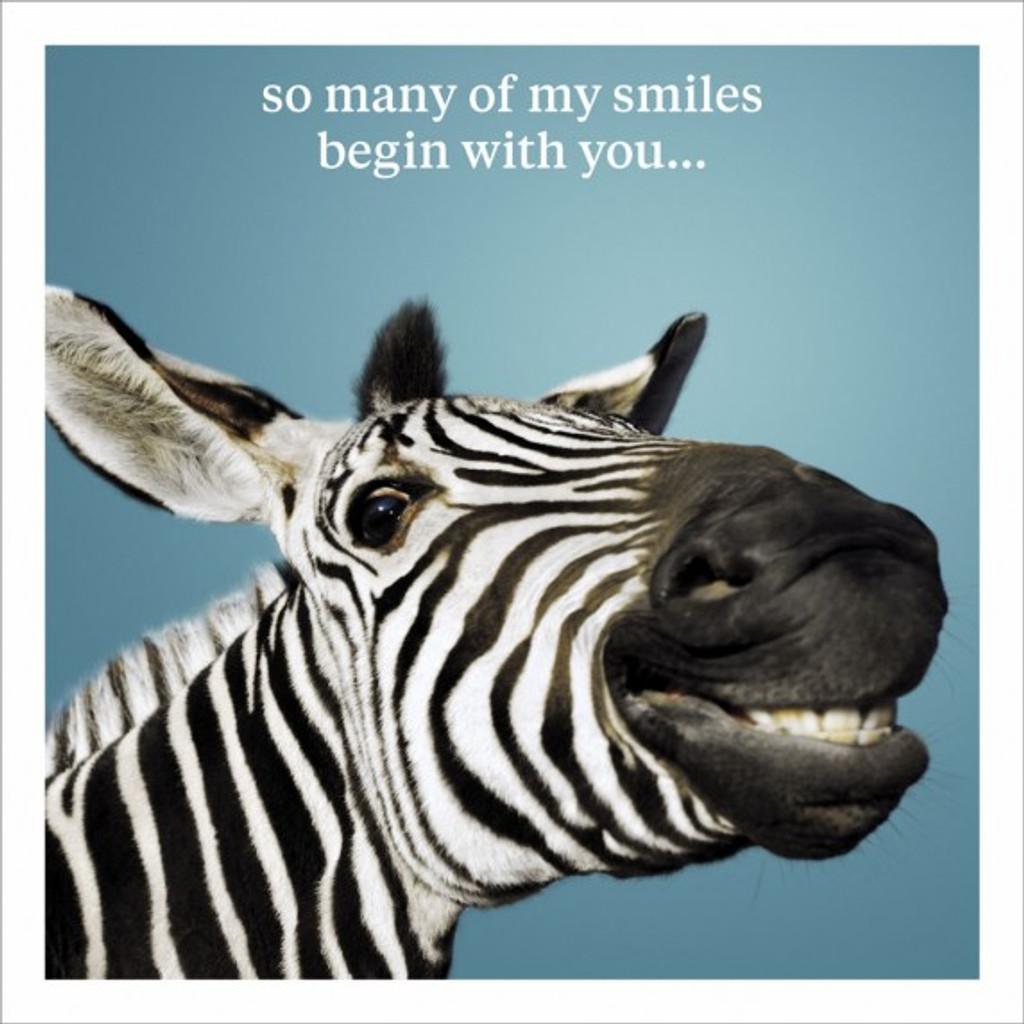Many Smiles Funny Birthday Card - Icon Art Company