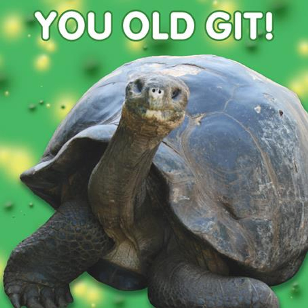 You Old Git Lenticular 3D Greeting Card - Mint Publishing