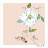 Hempstead Rose Floral Greeting Card by Claire Coles - Black Olive