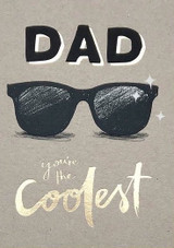 Coolest Dad Fathers Day Card - Stormy Knight