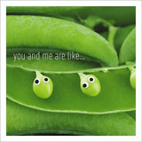 Peas in a Pod Wife Birthday Card - Icon Art
