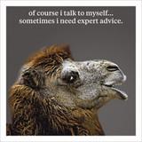 Expert Advice Humour  Birthday Card - Icon Art Company