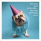 Born to be Wild  Humour  Birthday Card - Icon Art Company