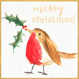 Cute Robin Charity Christmas Cards - Caroline Gardner