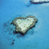 Heart Reef Greeting Card - Icon Art