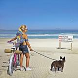 No Fun Beach Greeting Card - Icon Art