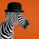 Clockwork Zebra Greeting Card - Icon Art