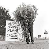 Heavy Plant Crossing Greeting Card - Icon Art