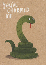 You have charmed me Birthday Card - Stormy Knight