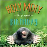 Holy Moly its your Birthday Funny Greeting Card - Abacus
