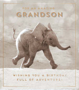 Amazing Grandson | Greeting Card | Pigment Productions