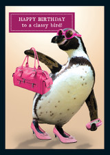 Classy Bird Birthday Card Animal Antics - Pigment Productions