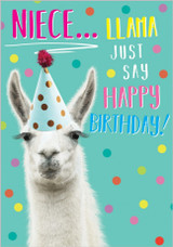 Niece Llama Funny Greeting Card - Abacus