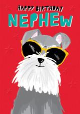 Nephew Cool Dog Birthday Card - Rachel Ellen