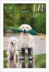 Have a Paw-fect Fathers Day  Greeting Card - Abacus