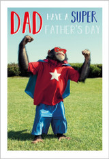 Have a Brilliant Fathers Day  Greeting Card - Abacus