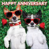 Anniversary Dogs Lenticular 3D Greeting Card - Mint Publishing