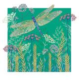 Floral Contemporary Green Dragonfly Birthday Cards - Rachel Ellen