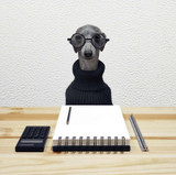 Dora the Office Dog | Greeting Card | Ohh Deer