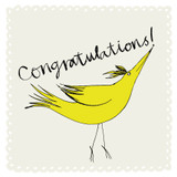 Congratulations Bird Greeting Card - The Paper Bird Company