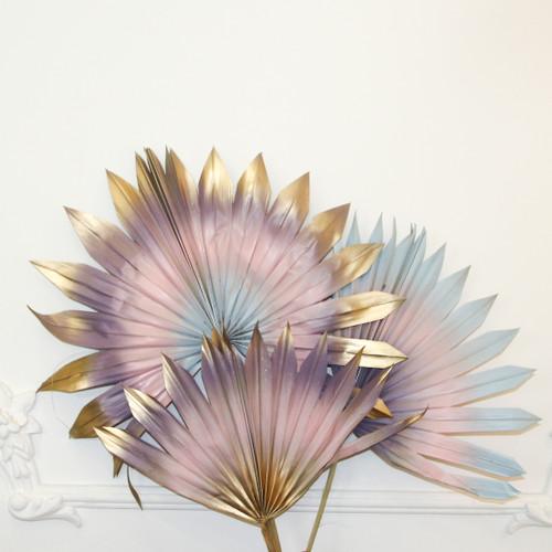 Palmes séchées colorées dégradé or rose, bleu pâle