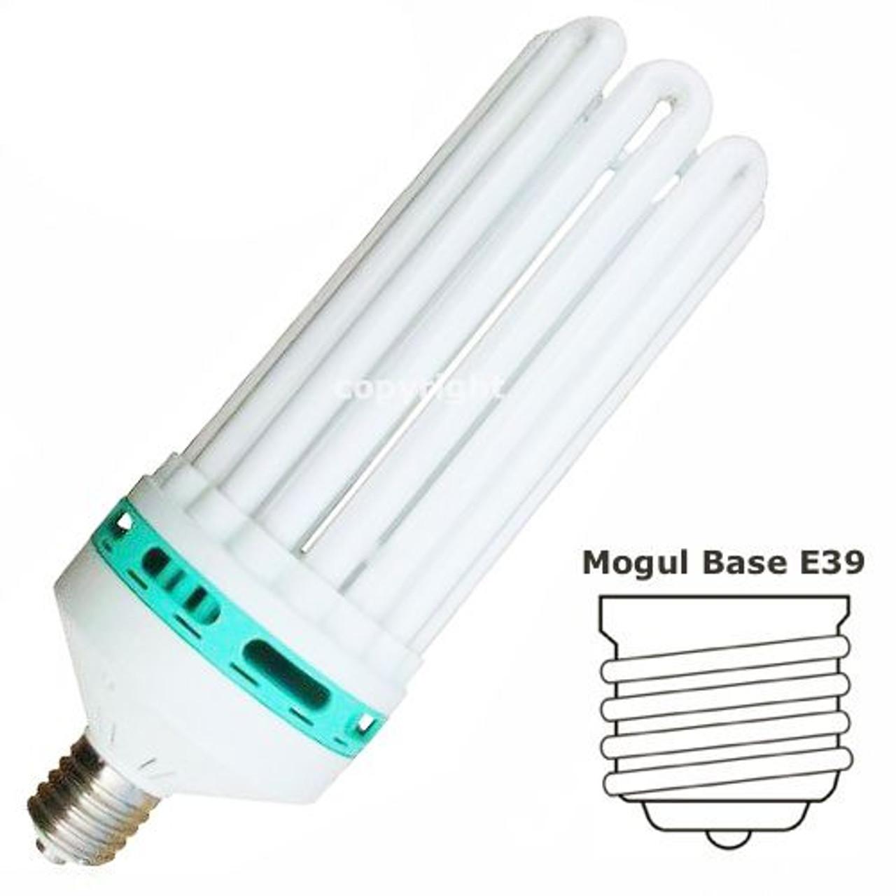 Feliz 250w Blue Cfl Plant Growth Light Bulb 6500k Ilighting Com