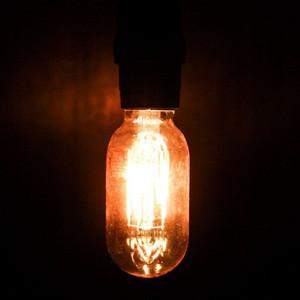 Maxlite 76542 V4.5T14DLED22 4.5W LED Vintage T14 Filament
