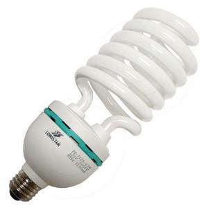 Longstar FE-IIIS-65W 50K 5000K 120V 65 Watt CFL Lamp LS00195