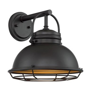 Nuvo 60-7072 Dark Bronze and Gold Wall Mount Fixture