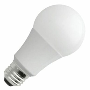NaturaLED 4528 LED A19 Light Bulb