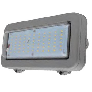 """12"""" Explosion Proof LED Light C1D2 Wall Fixture or Conduit Mount"""