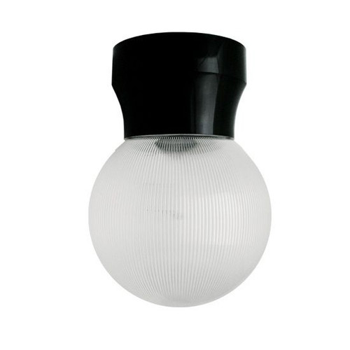 60W Max Black Economy Light Fixture with Clear Prismatic Globe Lens