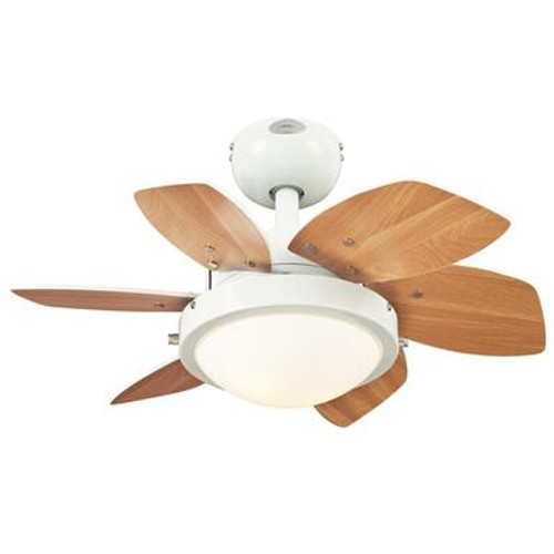 Westinghouse 7224700 Quince 24-Inch Indoor Ceiling Fan with Dimmable LED Light Fixture