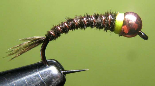 TLbugs Frenchy (6 Fly Packs)